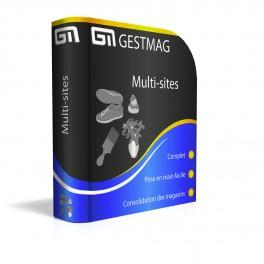 Gestmag version Réseau Multisites (Logiciel Auto-Certifié)