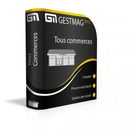 Gestmag version tous commerces Réseau 2 postes